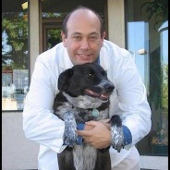 Dr. Bart Iaia, <br/> DVM, CVA Hospital Owner photo
